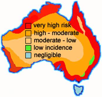 Termite Danger Map